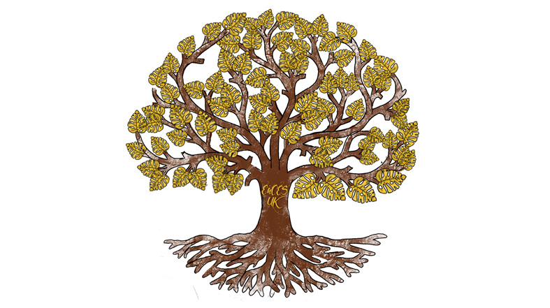 Estranged and Care Experienced Students tree logo by Leyla-Ann